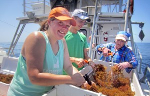 Marine Biology Ocean Research