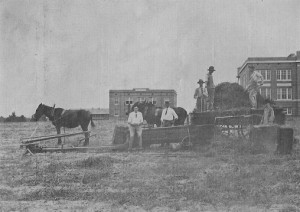 Harvesting hay in 1912 on the front lawn of TDAS. Old Main is at right, and Holt Hall is in the distance. photo