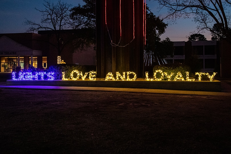 Lights Love and Loyalty